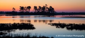 The day awakens over the marsh Assateague Island National Seashore Chincoteague Island Virginia Eastern Shore Marsh Seashore tranquility.jpg