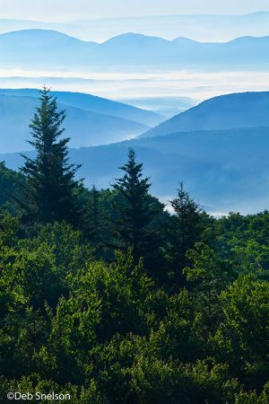 Dramatic dawn on Allegheny Mountains from Dolly Sods Wilderness West Virginia.jpg