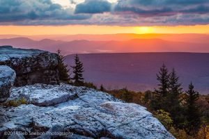 c13-Sunrays over Bear Rocks Dolly Sods Wilderness Allegheny Mountains West Virginia.jpg