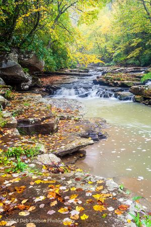Mill Creek a New River Tributary in Ansted West Virginia WV a Waterfall in Autumn.jpg