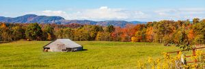 Horse Barn in Autumn in the Canaan Valley, WV