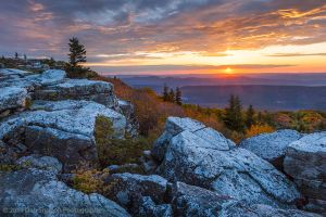 Bear Rocks Preserve Sunburst Dolly Sods Wilderness West Virginia sunrise.jpg