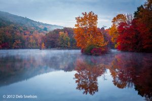 Cold Dawn Hidden Lake Delaware Water Gap Pennsylvania Dawn Fall foliage  October 2012 Autumn.jpg