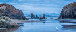 Coquille Point Beach Blue Hour Bandon Oregon.jpg