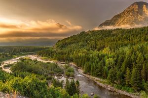 Fog lifting over Swiftcurrent River Many Glacier area Glacier National Park Montana USA.jpg