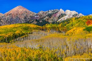 Kebler Pass Autumn Color Aspens Colorado.jpg
