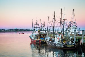 MacMillan Wharf Fishing Vessels Provincetown Cape Cod Massachusetts.jpg