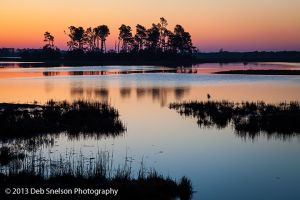 Predawn, Assateague National Wildlife Refuge Virginia's Eastern Shore