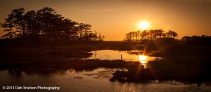 Sunset over the Assateague National Wildlife Refuge Virginia