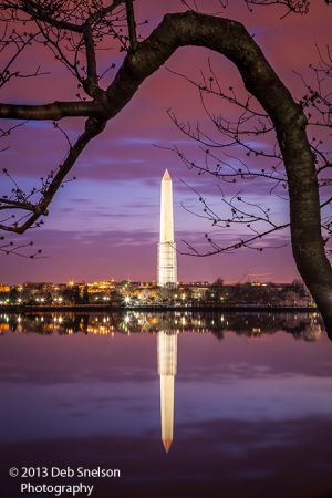 Washington Monument before Dawn, Washington DC