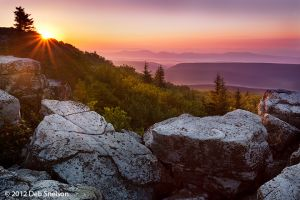 Rosy Dawn, Dolly Sods Wilderness, West Virginia