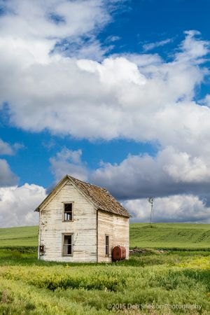Abandoned farm house and windmill 2 Storment Road Endicott Palouse Washington-c49.jpg