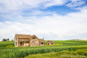 Abandoned farmhouse Old Weber House Pullman Palouse Washington-c95.jpg