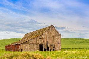 Barn with red hardware Storment Road Endicott Palouse Washington.jpg