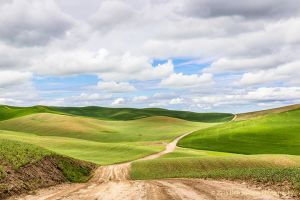 Dirt Road Enos Rd Colfax Washington Palouse.jpg