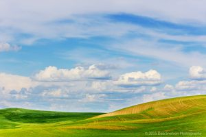Palouse Hills Abstract Colfax Washington Palouse-c26.jpg