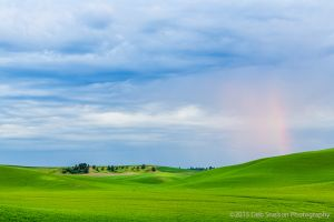 Palouse sunset with rainbow Pullman Washington.jpg