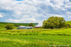 Red Barn Complex  Uniontown Road Washington Palouse.jpg