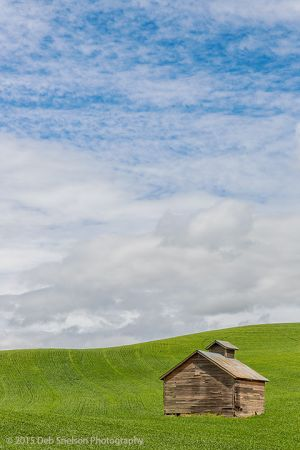 Shed on Green Colfax Washington Palouse.jpg