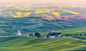 Steptoe Butte Golden Hilltops Colfax Washington Palouse.jpg