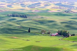 Steptoe Butte Red Barn Colfax Washington Palouse.jpg
