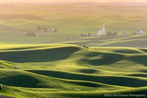 Steptoe Butte Sunset - Granary and blanket hills  Colfax Whitman County Washington Palouse.jpg