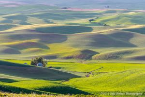 Steptoe Butte Sunset with backlit hills Colfax Whitman County Washington Palouse.jpg