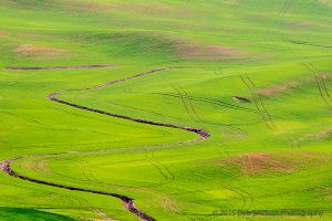 Steptoe Butte View patterns Colfax Washington Palouse.jpg