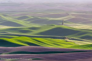 Steptoe Butte Waves of Purple  Colfax Washington Palouse.jpg