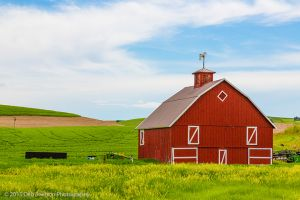 red barn with horse weathervane Endicott Washington Palouse.jpg