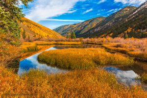 Beaver Pond in the Colorado Rockies Ashcroft.jpg