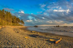 Golden Light on Ruby Beach Olympic National Park Washington.jpg