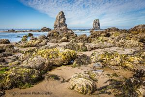Tide Pools and Sea Stacks on Cannan Beach-c79.jpg