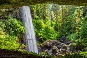 View into the Valley from Behind North Falls at Silver Falls SP Or.jpg