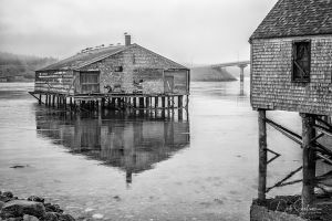 Lubec Abandoned Fish Shed Maine.jpg