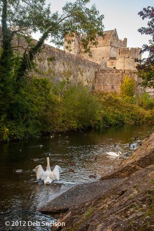 Cahir Castle Tipperary Ireland.jpg