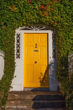 Cahir town door Co Tipperary Ireland.jpg