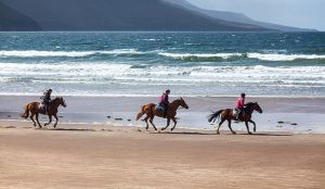 Horseback riding on White Strand Glenbeigh Kerry Ireland.jpg