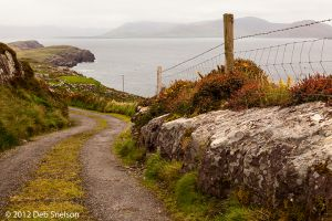 Kildreelig and Bolus Head views Ivernagh Kerry Ireland.jpg