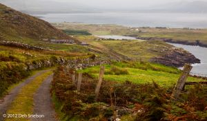 Kilreelig to St Finars Bay Ring of Kerry Ireland.jpg