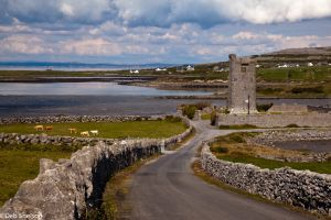 Muckinish Castle County Galway Ireland.jpg