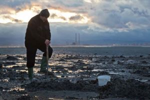 Periwinkle Picking  Sandymount Howth Dublin Ireland.jpg