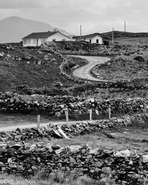 Road to Renvyl Ardnagreevah County Galway Ireland.jpg