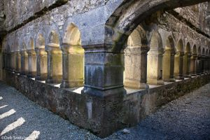 Ross Errilly Friary cloisters County Galway Ireland.jpg