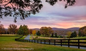 Country Road Sunset Scuffletown Rd Barboursville Virginia.jpg