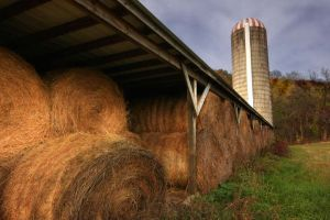 Hay bales Farm shed and Silo Nelson County Virginia.jpg