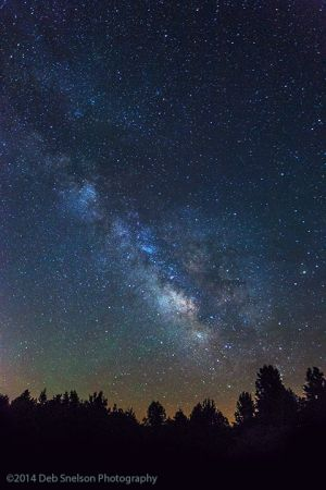 Milky Way Night Photography Powhatan Wildlife Management Area.jpg
