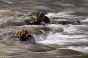 Ripples Cowpasture River Fort Lewis Lodge Bath County Virginia.jpg