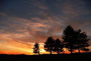 Silhouettes at sunset Greene County Virginia.jpg