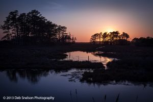 Sunset  Assateague National Wildlife Refuge Chincoteague Island Virginia Eastern Shore Marsh silhouettes tranquility.jpg